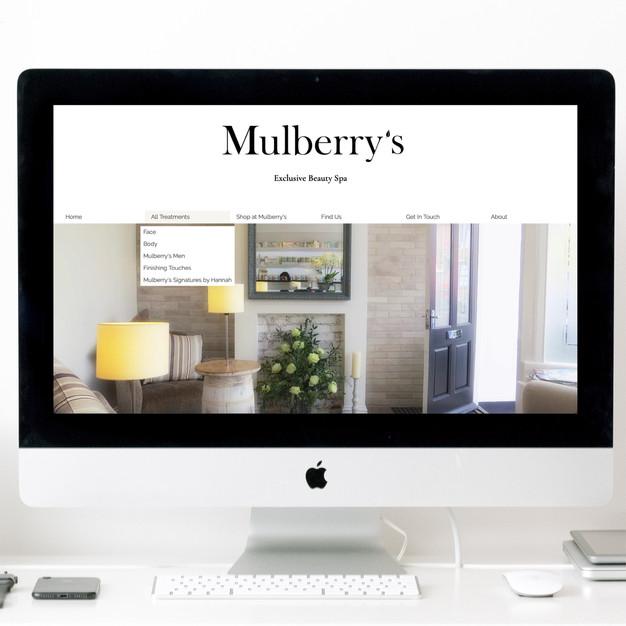 Mulberry's website in situ.jpg