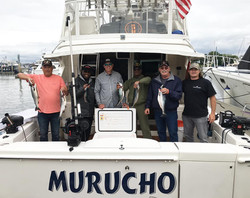 Murucho