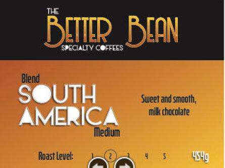 South America medium