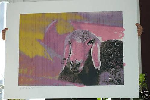 Menashe Kadishman Pink Sheep