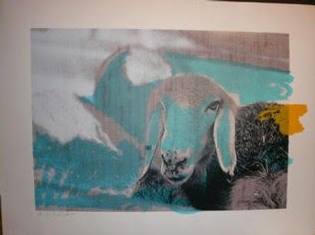 MENASHE KADISHMAN One Blue Sheep Orig. Ltd Ed.