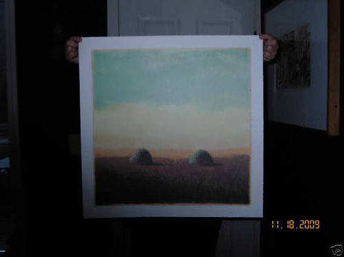 CAROL ANTHONY ~ Meadow E Tide 88 ~ ORIG. LTD. ED