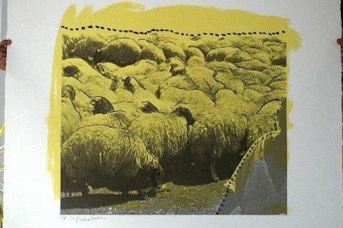 Yellow Herd Of Sheep Menashe Kadishman