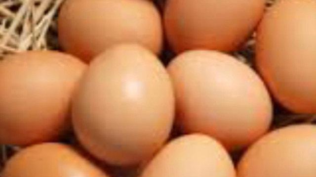 Dozen of eggs (price per dozen)