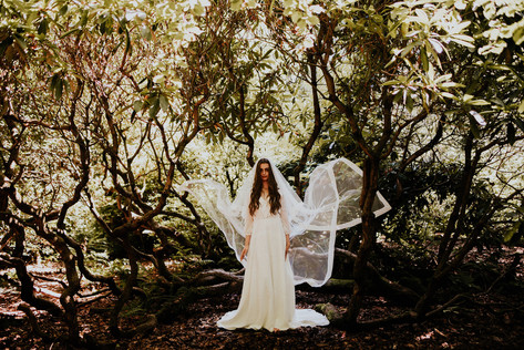 The Sweetclover Dress + Sappho Veil