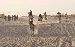 Festival au Desert__028