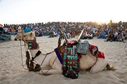 Festival au Desert__002