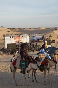 Festival au Desert__008