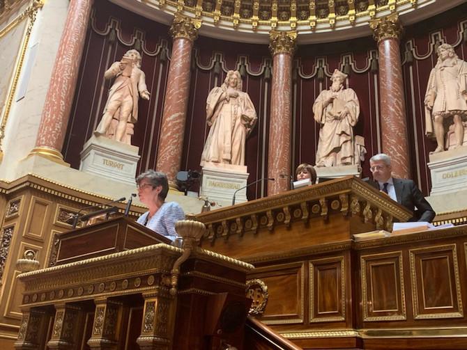 Examen du projet de loi de transformation de la fonction publique en commission des lois