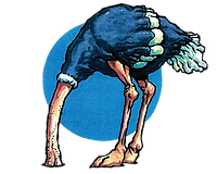 Ostrich - Ad Series.png