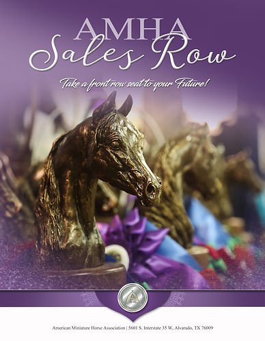 1 Sales Row Cover FINAL.jpg