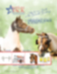 Star Lake Business Ad.jpg