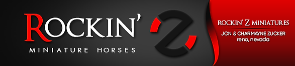 rockin-z-banner.png