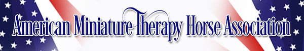 American Therapy Assoc.jpg