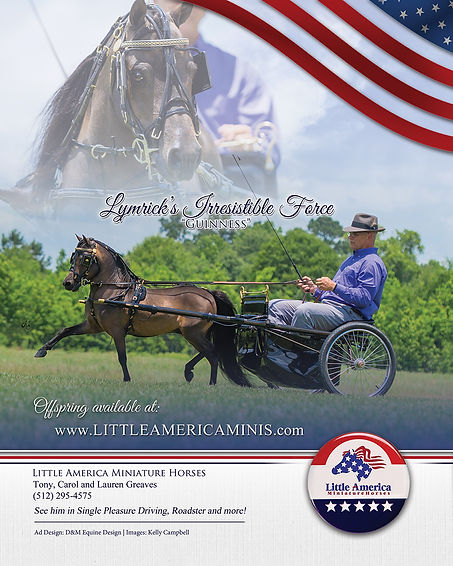2019-World-show-little-america-stall sig