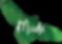 Madii Logo.png