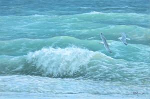 Gulls & Waves