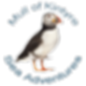 puffin logo copy.png