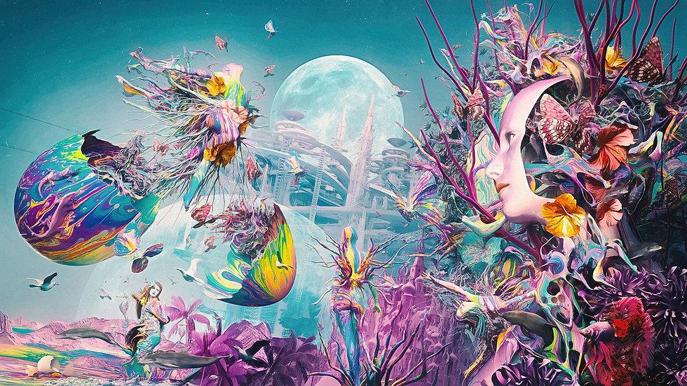 dolphin-dream-02-4K_1_1.jpg