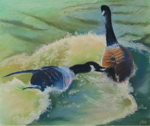 Brookeside Ducks