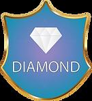 Diamond protecion shield@4x.png