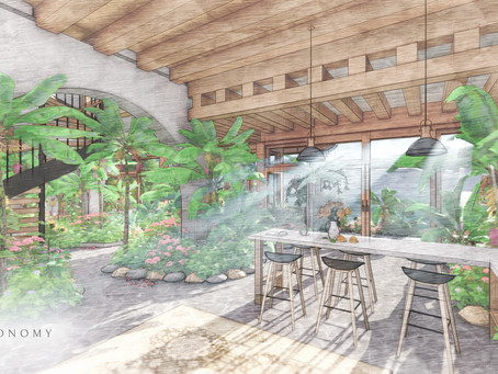 WHY LIVING WITH PLANTS WILL HARMONIZE YOUR SYSTEM & ENHANCE YOUR WELLBEING