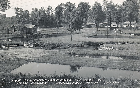 stockade bait pond.jpg