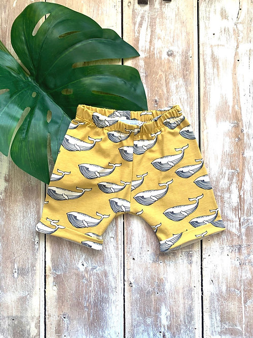 Yellow Whales - Shorts