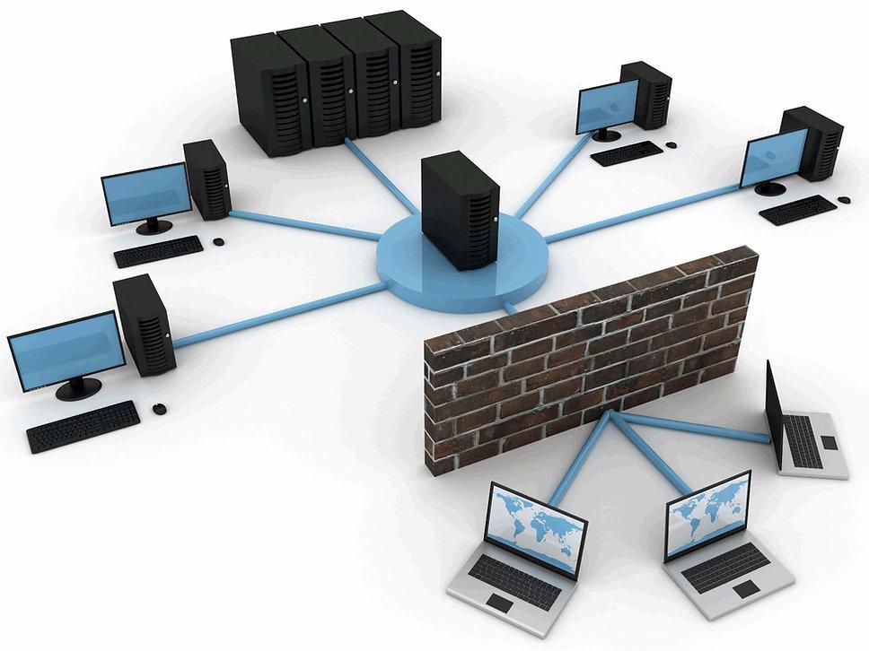 network2.jpg