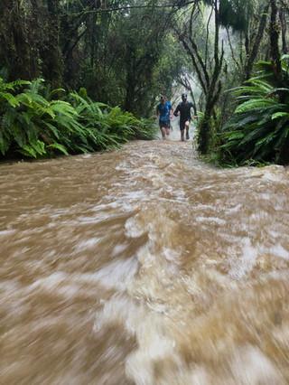 Trail Running New Zealand