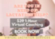 VIRTUAL LACTATION SERVICES.png