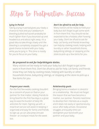 Postpartum Planning Kit (1).png