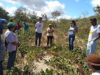 Atividade_campo_avaliação_participativa_