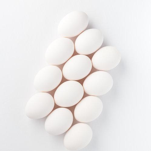 12 No Corn/Soy Duck Eggs