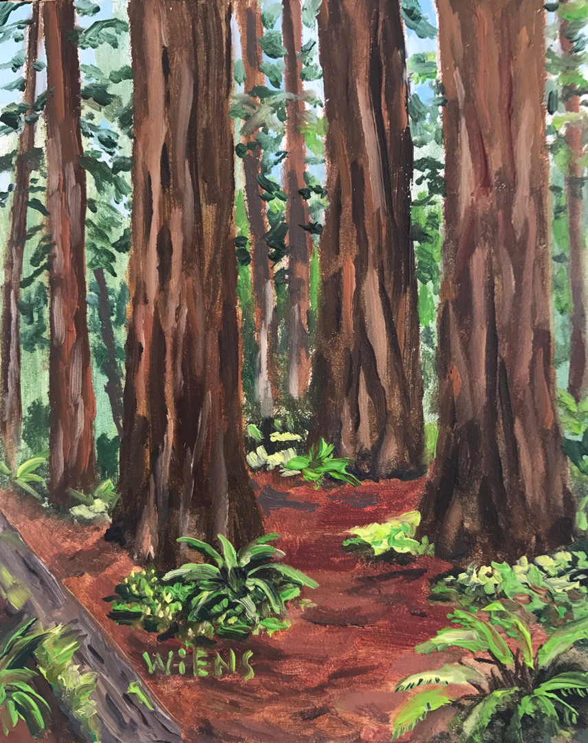 """Redwood Trail"""