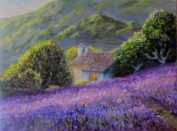 """French Lavender"""