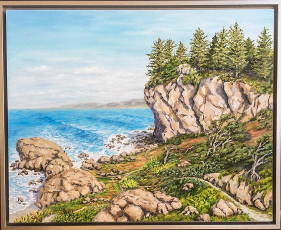 """Patrick's Point Trails"""