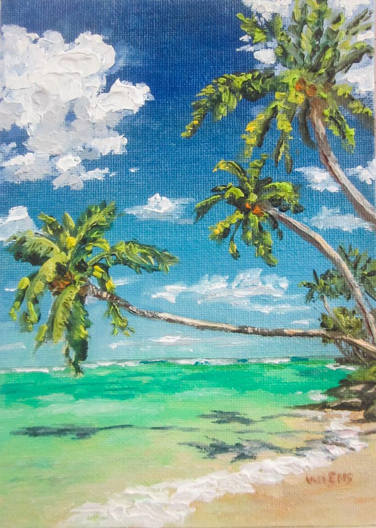 """Palm Shadows"""