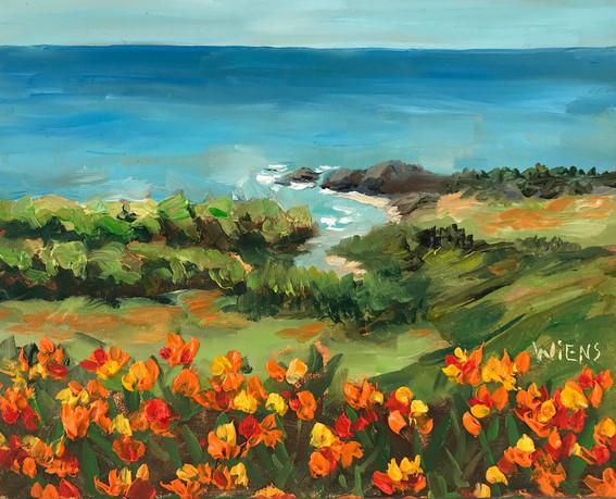 """Coastal Poppies"" 4x5"" oil on gessobord"