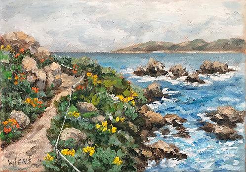 """""""Point Lobos Trail"""""""