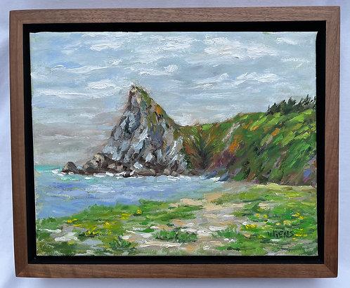 "Northern California Coast  Humboldt Lagoon State Park 9x11"" framed oil painting"