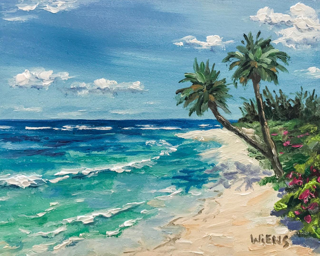 """Windward Shore Beach"""