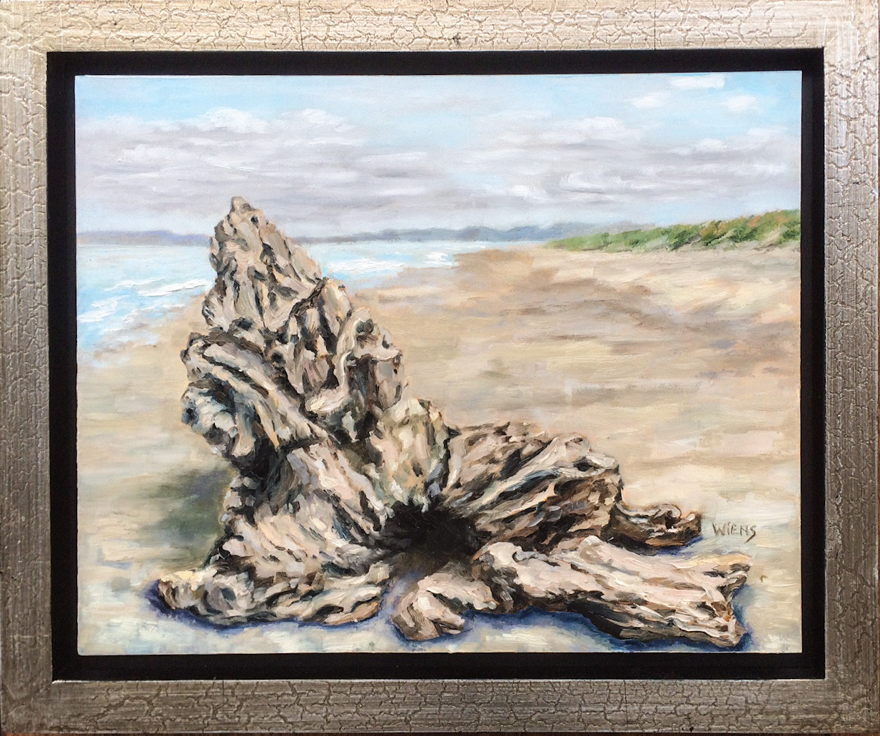 """Driftwood on Kellogg Beach"""
