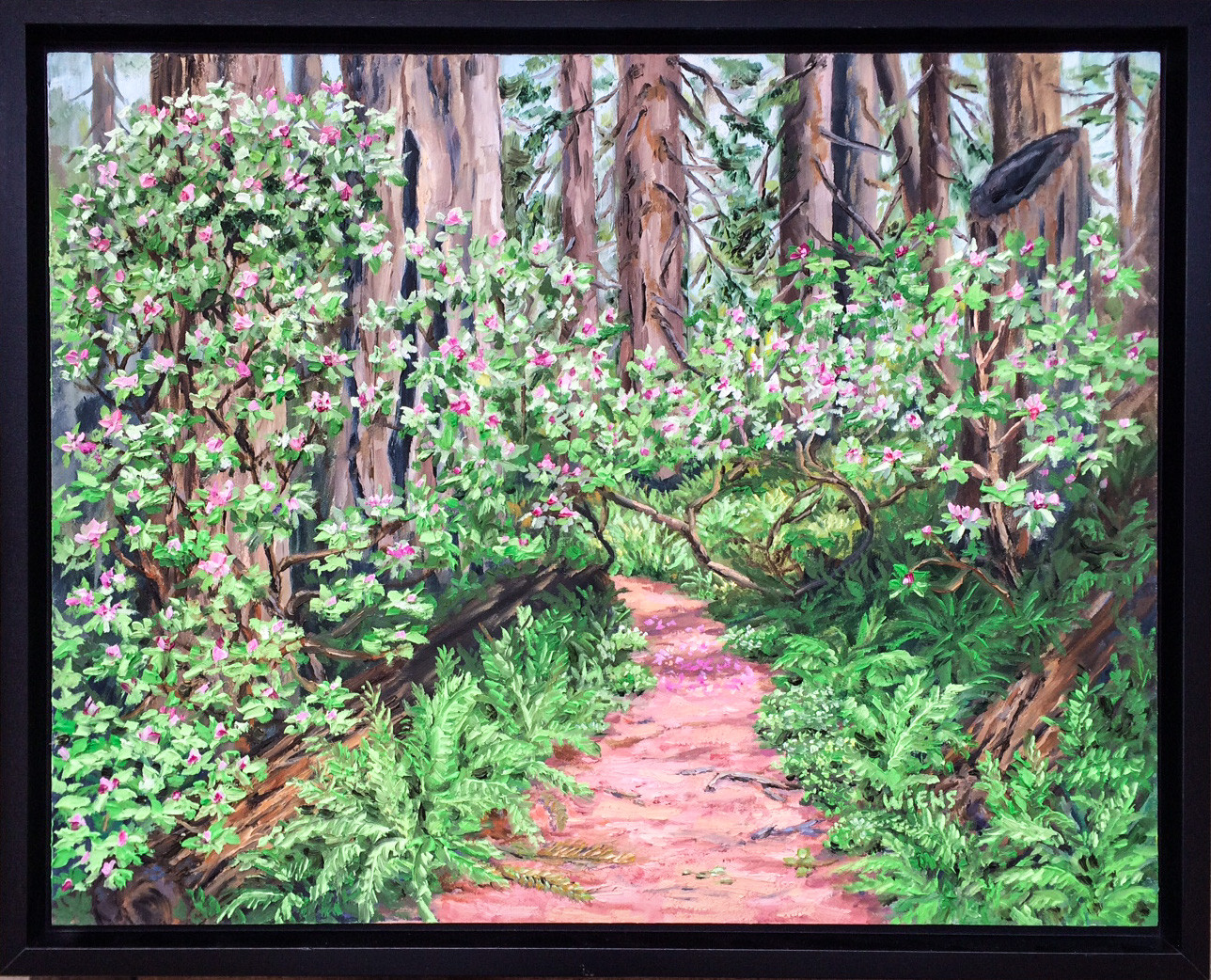 """Rhodies in the Redwoods"""