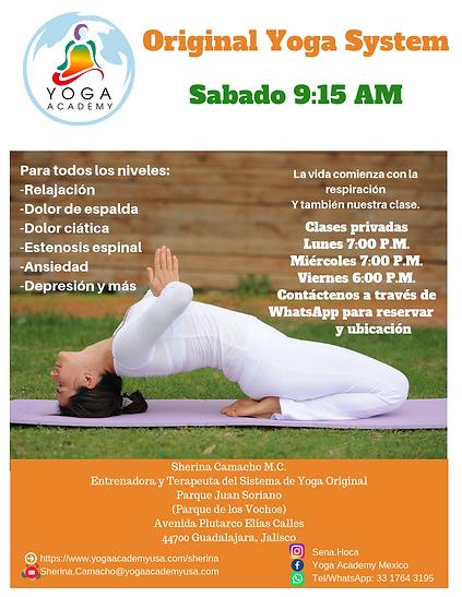 Original Yoga System (11).png
