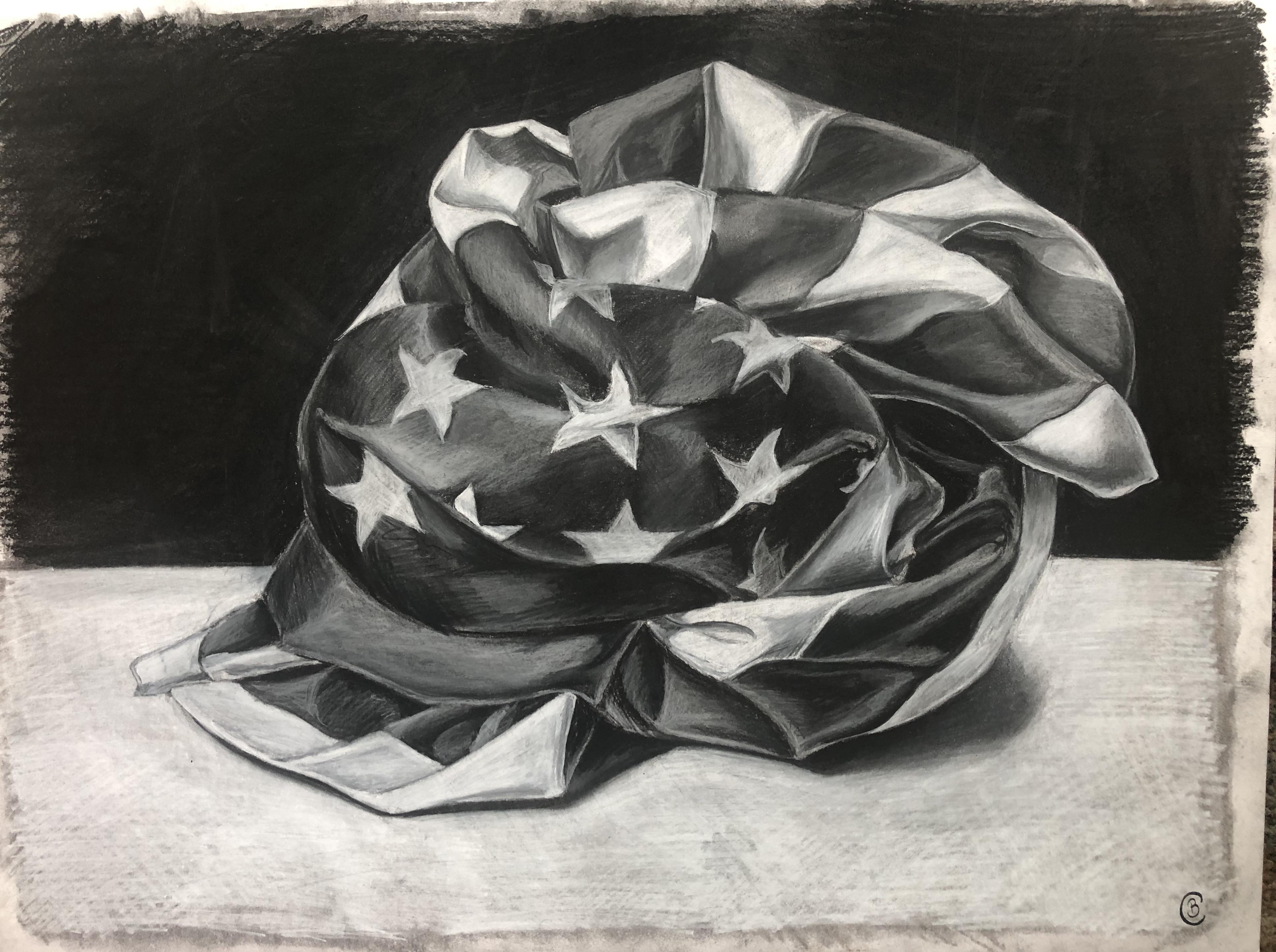 America Flag Fabric Study