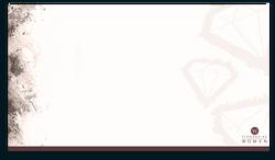 DiamondsintheRough_ppt-blank-slide.png