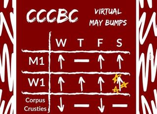 Virtual Bumps 2020