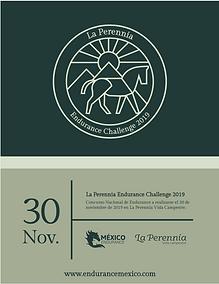 Captura de Pantalla 2019-10-17 a la(s) 1