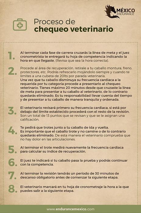 Chequeo_veterinario.jpg